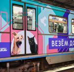 С помощью QR-кодов в московском метро можно завести питомца